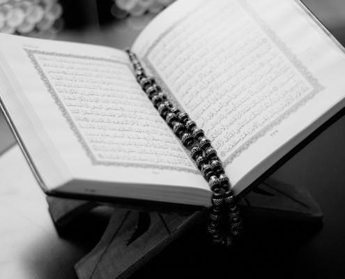 קורס ערבית למתחילים