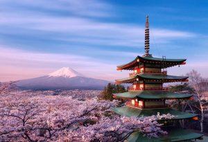 למה ללמוד קורס יפנית בניוסקול