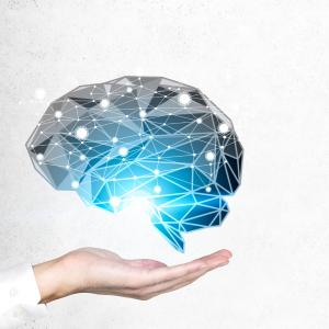 איך כדאי ללמוד אנגלית או שפות אחרות באינטרנט? זו השיטה של שיאן גינס בזיכרון